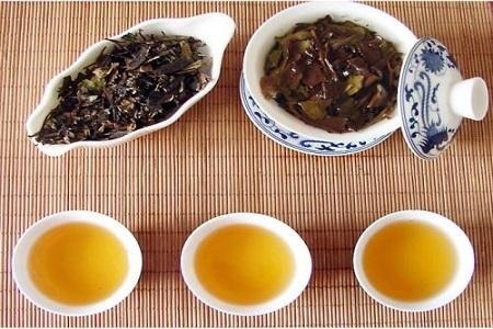 朝阳茶艺培训学校