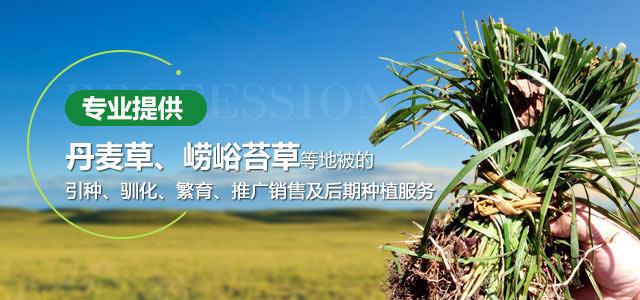 北方绿化公司