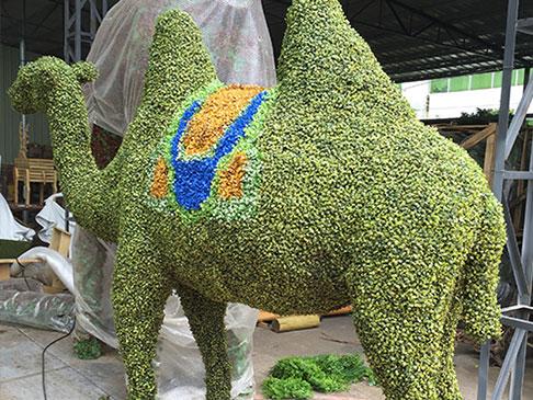 北京垂直绿化