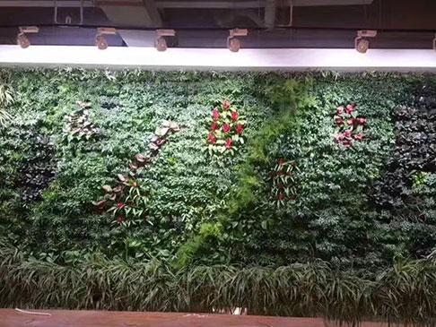 北京室内垂直绿化