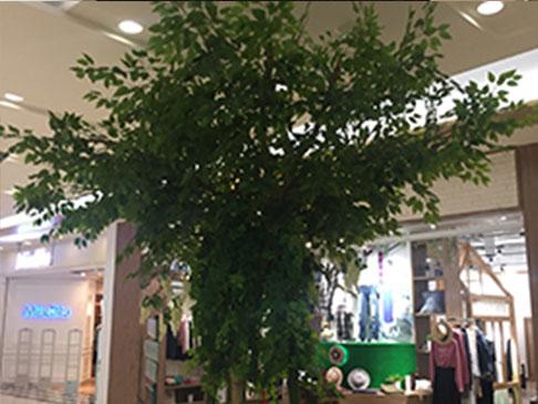 北京仿真树