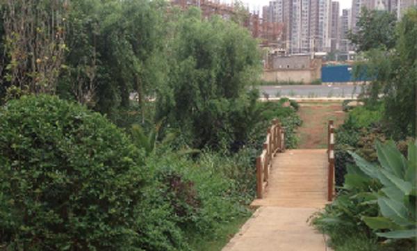 校園外景1