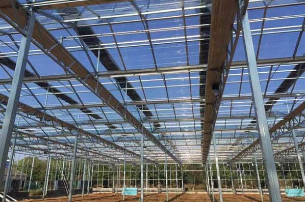 甘肃蔬菜基地温室大棚建设案例