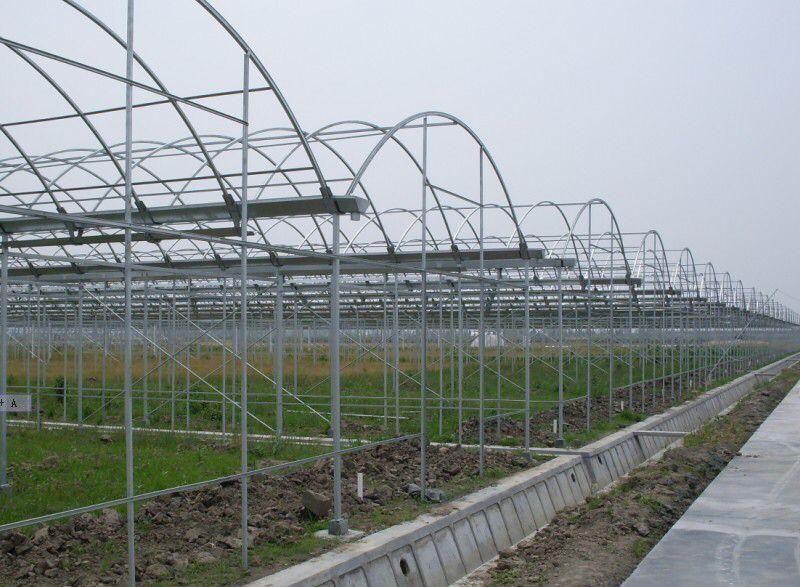甘肃孔雀养殖基地温室大棚工程建设案例