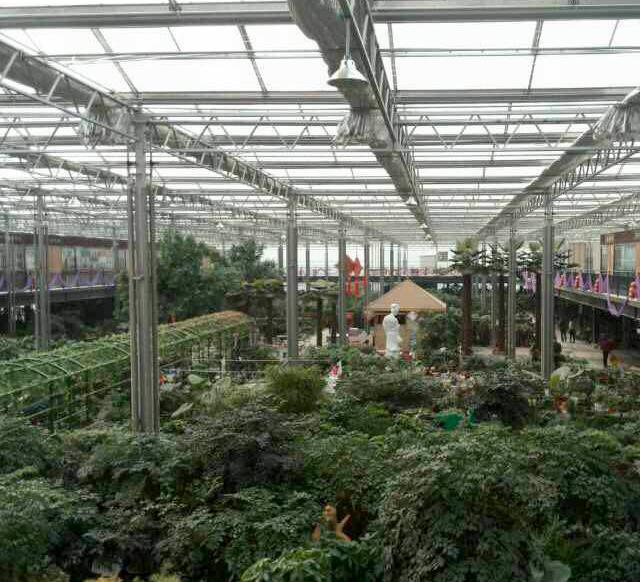 甘肃新型农业温室大棚