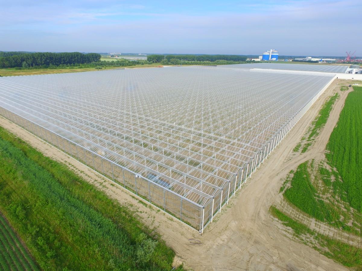 兰州花世界基地温室大棚设计建设案例