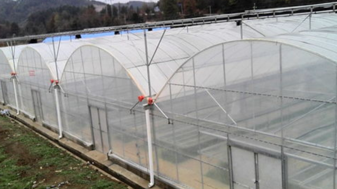 塑料温室大棚