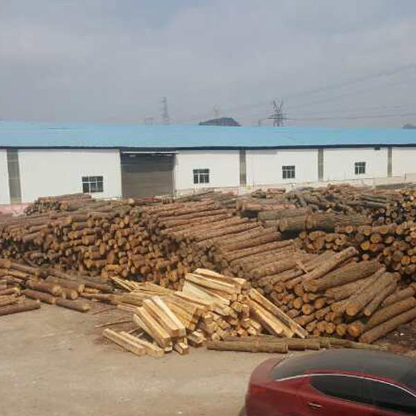 优质原木批发