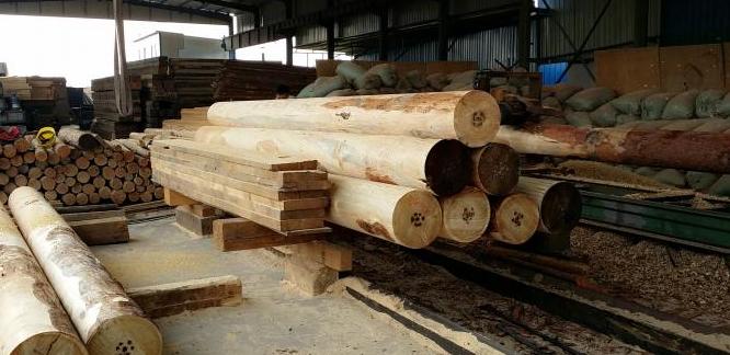 贵阳原木厂家来给大家说下各国原木品质标准和检验方法