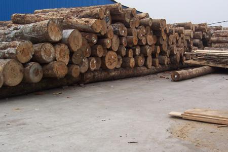 木材加工厂这些安全常识,你必须要了解!