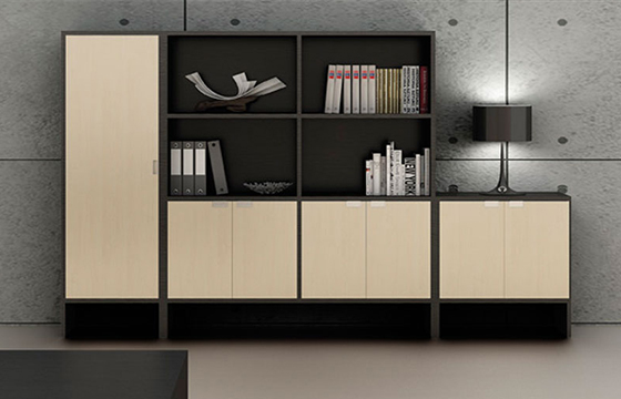 办公室文件柜-定制实木文件柜-定做文件柜