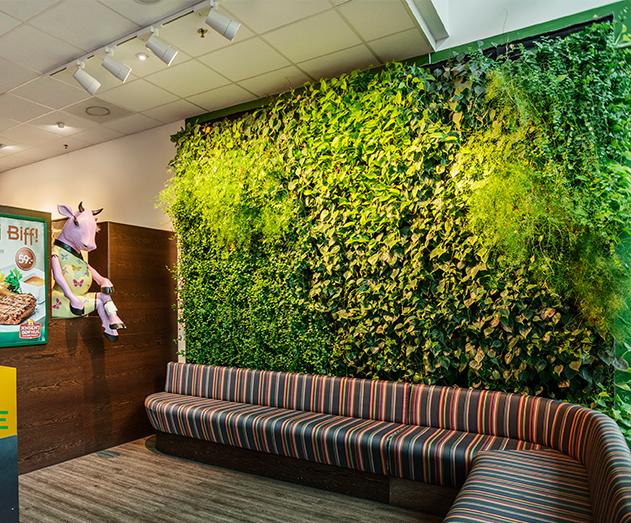 成都立体绿化植物墙