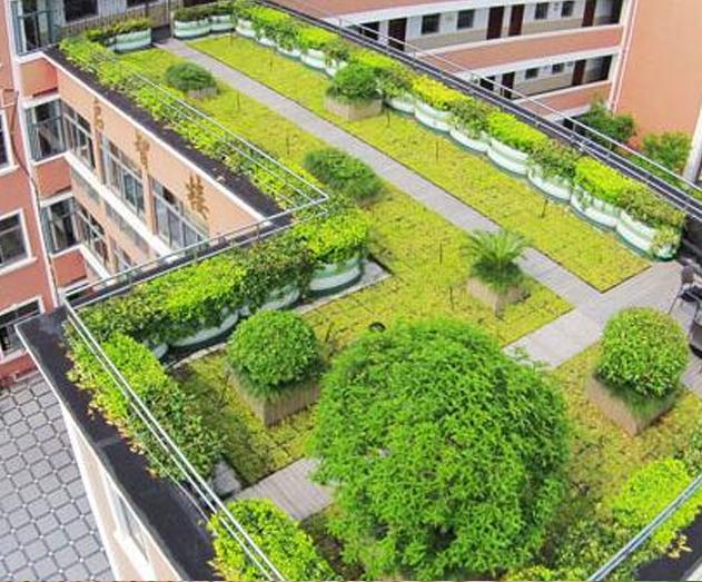 成都屋顶绿化养护