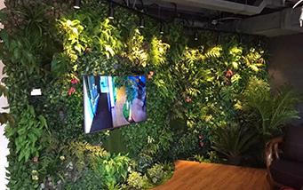 大悦城室内植物墙
