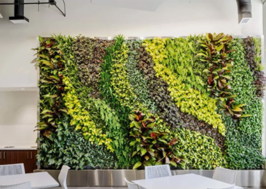 制作室內高植物墻時要注意哪些方面內容