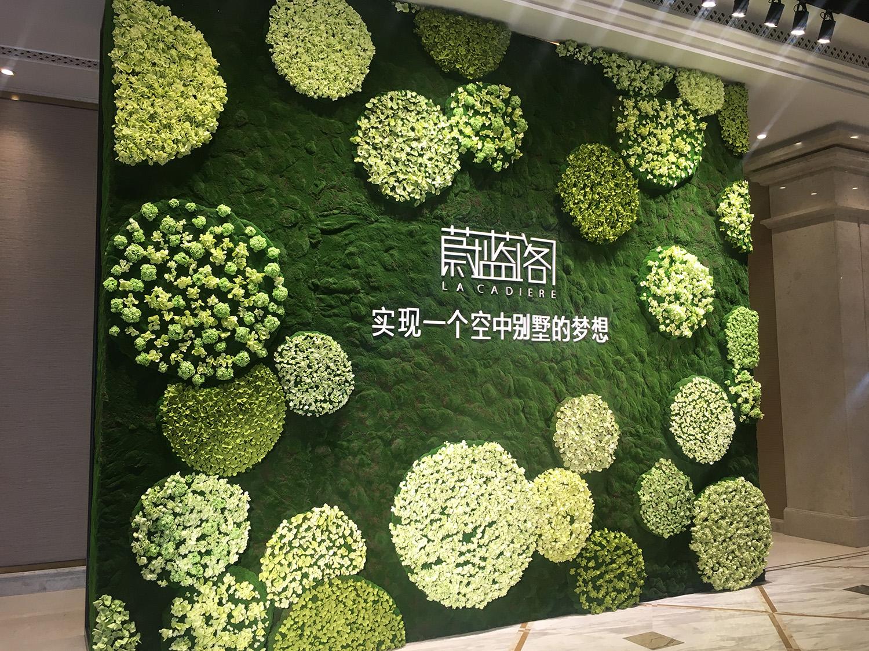 卡地亚花艺绿化墙