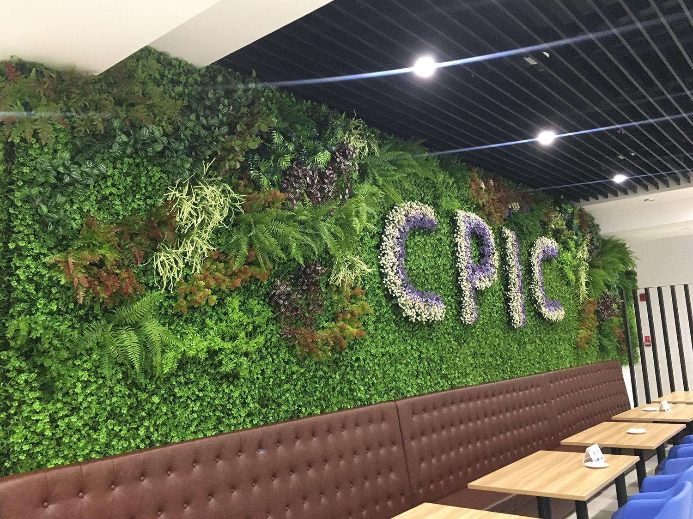 太平洋植物墙