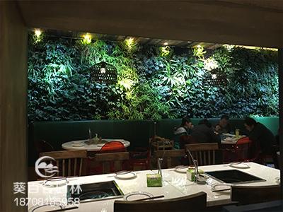 室内植物墙制作