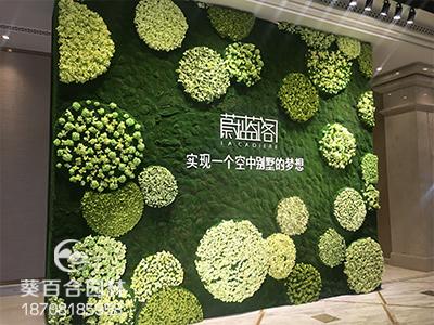 仿真植物墙安装,你也可以