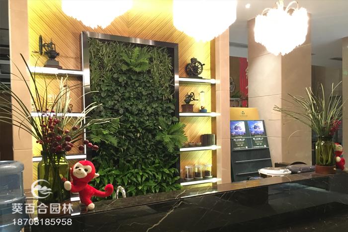 成都室内植物墙厂家