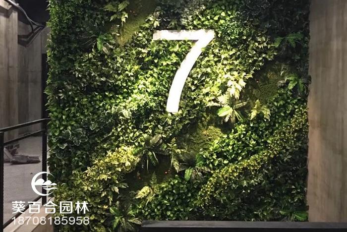 7天室内植物墙