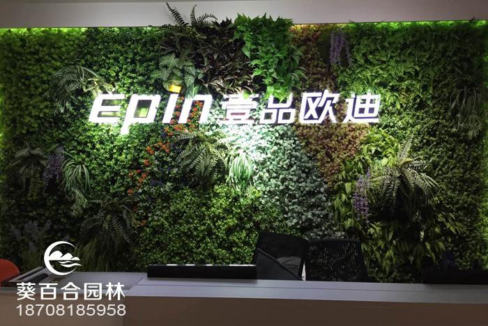 办公室装饰植物墙的重要性