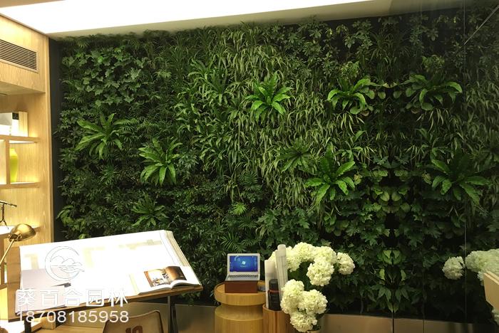 世豪金河谷绿植墙
