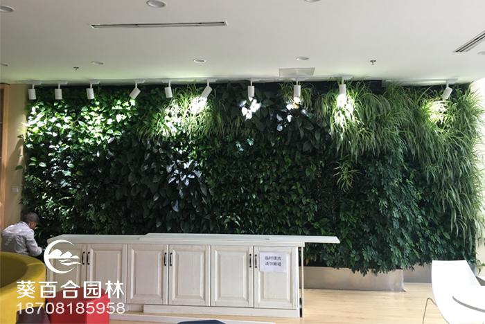 东方天辰室内绿植墙