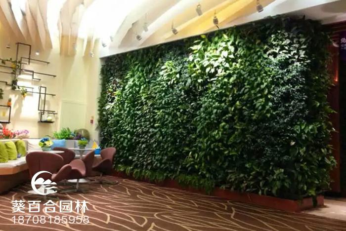 成都高新区立体植物墙