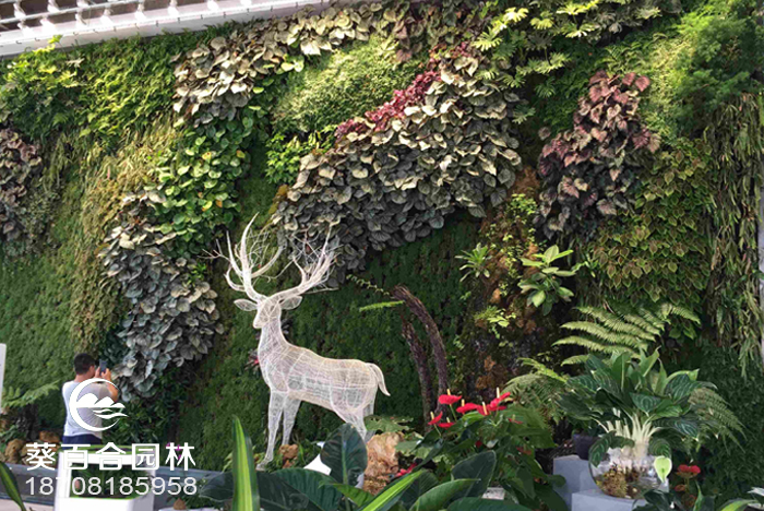 容器式植物墙