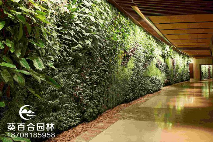打造室内天然氧吧?植物墙才是最佳的选择