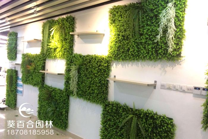 制作室內立體綠化如何掌控比例?