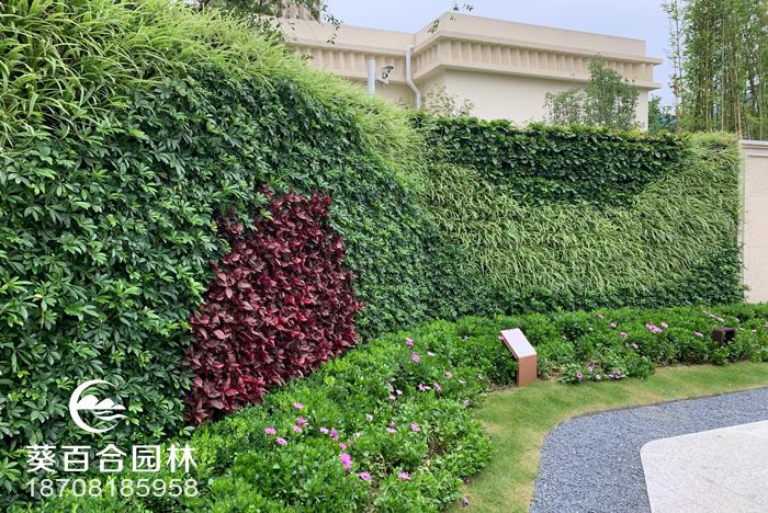 做室内植物墙节省开支的注意事项