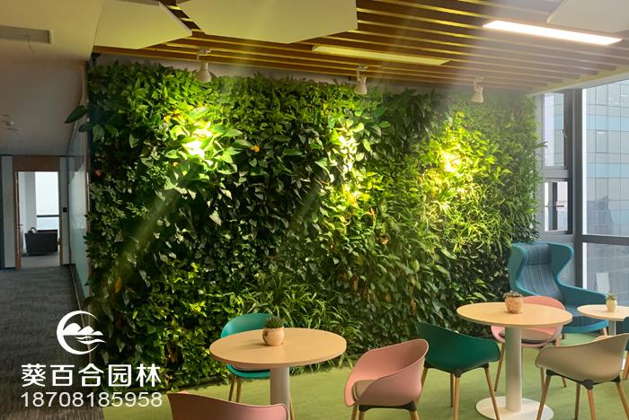 活体植物墙都有哪些特点