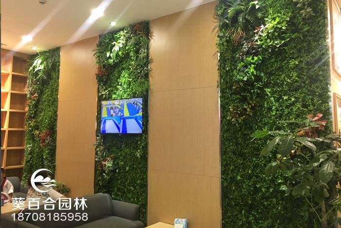 中海室内绿植墙