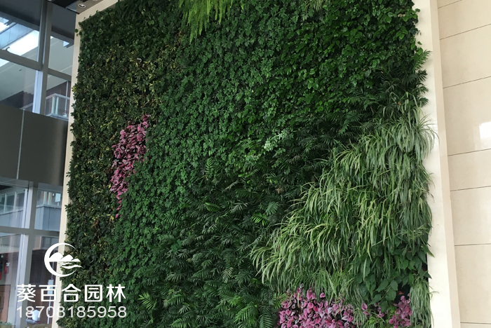 中海国际前厅绿植墙