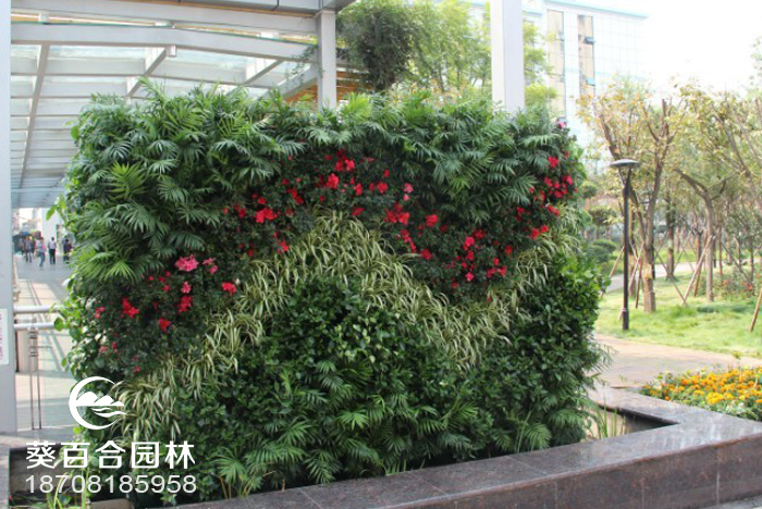 遂宁中心医院立体植物墙