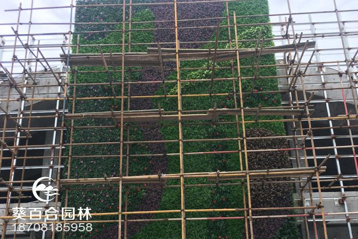 中迪广场仿真植物墙布置