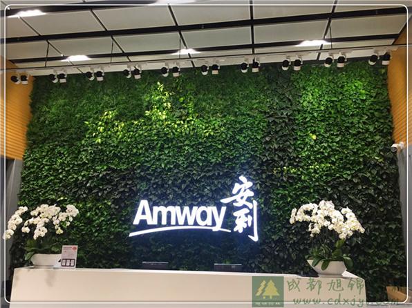 绵阳植物墙,绵阳屋顶绿化,绵阳立体绿化,绵阳垂直绿化,绵阳仿真植物墙,绵阳绿化养护