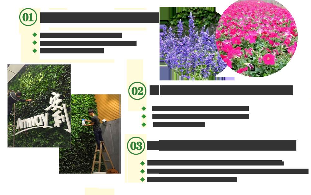 植物墙,屋顶绿化,立体绿化,垂直绿化,成都植物墙,成都屋顶绿化,成都立体绿化,成都垂直绿化,成都绿化养护