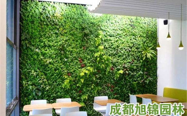 立体绿化墙
