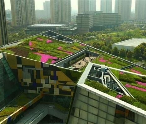成都屋顶绿化