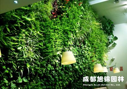 成都仿真植物墙