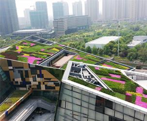 成都屋頂綠化