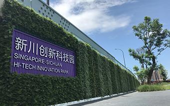 卧波桥垂直綠化