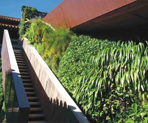 成都垂直綠化