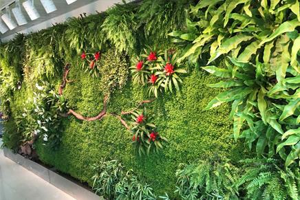 哪些地方不適合安裝牆面立體綠化