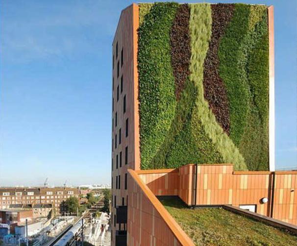 成都垂直綠化设计