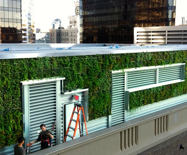 成都垂直綠化工程