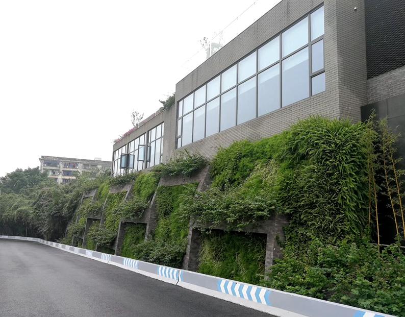宜宾市五粮液垂直绿化施工